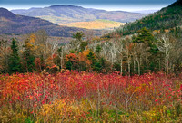 Autumn In White Mountains, New Hampshire